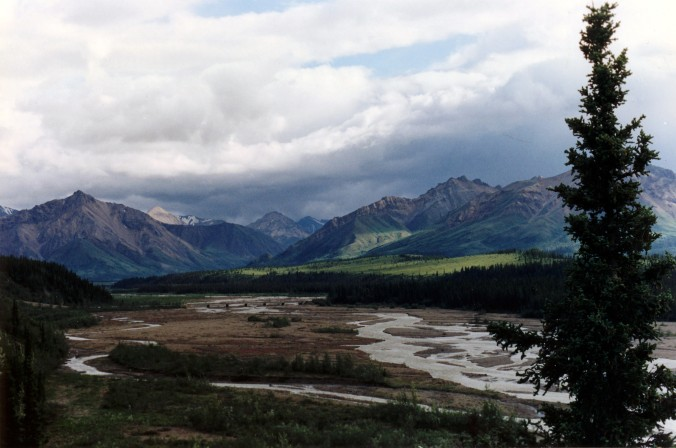 Teklanika River DNP